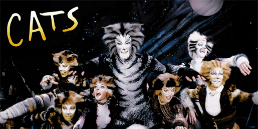 Cats Musical Checks