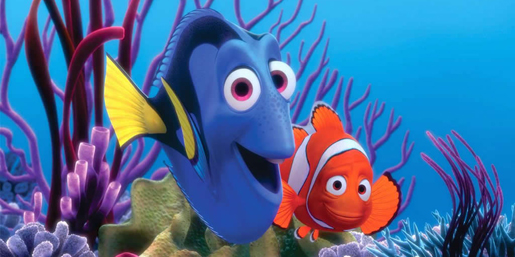 Finding Nemo Checks